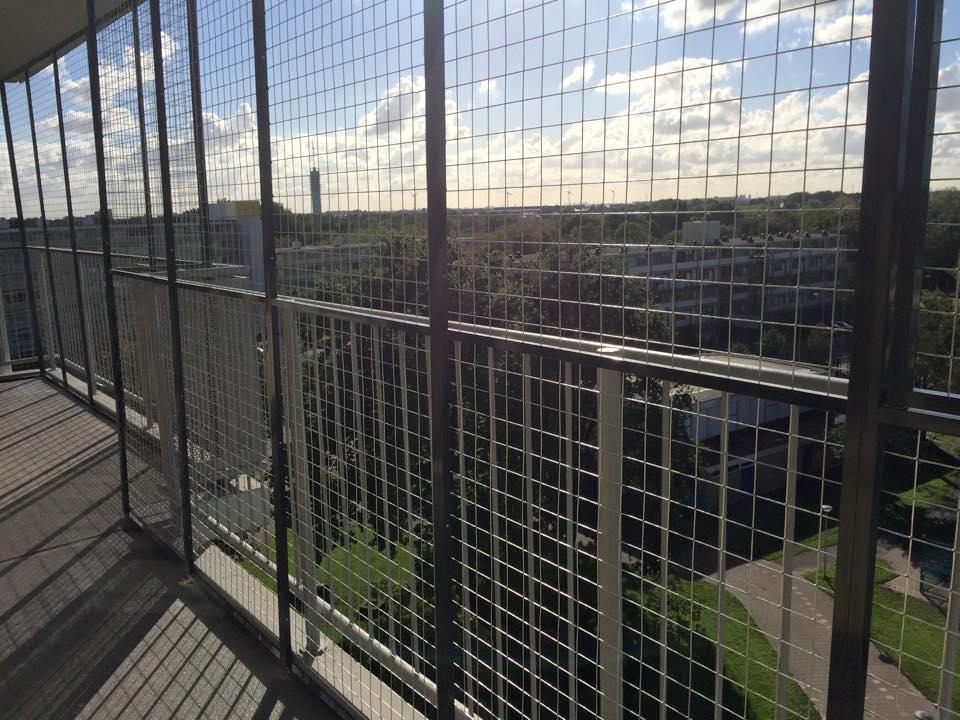 Tuin Afzetten Kat : Kattenren balkon of dakterras de veiligste kattenrennen van